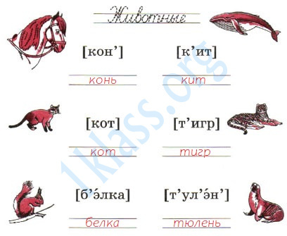 Русский язык 1 класс рабочая тетрадь Канакина страница 24 - упражнение 3