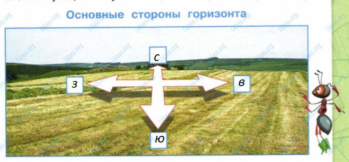 Ответ по Окружающему миру 2 класс рабочая тетрадь Плешаков 2 часть страница 43 задание 2