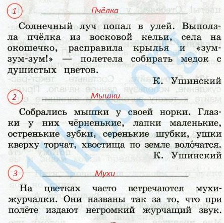 Русский язык 2 класс рабочая тетрадь Канакина 2 часть страница 55 - упражнение 119