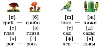 Русский язык 1 класс учебник Канакина страница 97