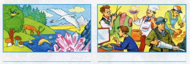 Окружающий мир 3 класс рабочая тетрадь Плешаков 2 часть страница 26