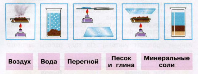 Окружающий мир 3 класс рабочая тетрадь Плешаков 1 часть страница 38
