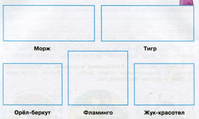 Окружающий мир 3 класс рабочая тетрадь Плешаков 1 часть страница 64