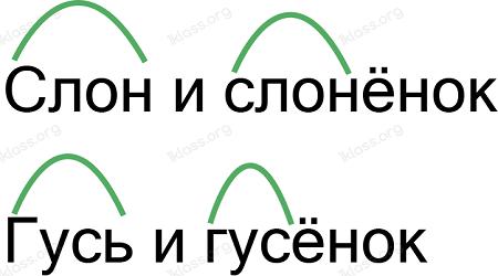 Ответ по Русскому языку 2 класс рабочая тетрадь Канакина 1 часть страница 23 упражнение 46