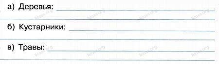 Окружающий мир 2 класс рабочая тетрадь Плешаков 1 часть страница 39 задание 3
