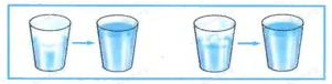 Ответы по Окружающему миру 1 класс рабочая тетрадь Плешаков 1 часть страница 43 задание 1-4