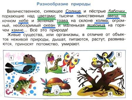 Ответ по Окружающему миру 3 класс рабочая тетрадь Плешаков 1 часть страница 5 задание 2