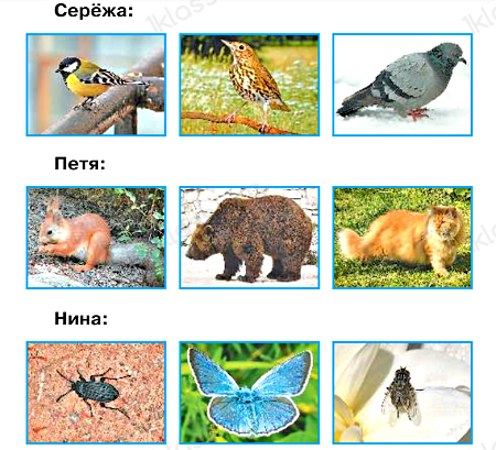 Окружающий мир 1 класс учебник Плешаков 1 часть стр 53-8-1