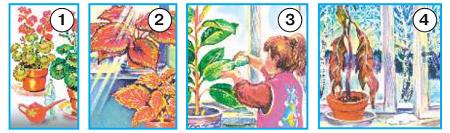 Окружающий мир 1 класс учебник Плешаков 1 часть стр 71