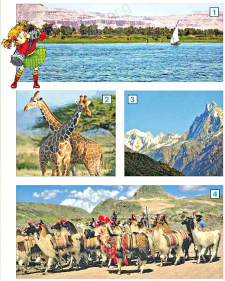 Окружающий мир 2 класс учебник Плешаков 2 часть стр 112