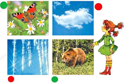 Ответ по Окружающему миру 2 класс учебник Плешаков 1 часть страница 32-3-1
