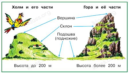 Окружающий мир 2 класс учебник Плешаков 2 часть стр 79
